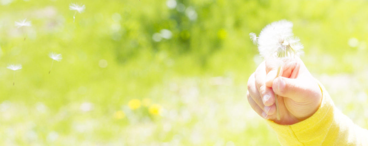 鹿児島県霧島市の子宝相談(不妊・妊活)、ダイエット相談、漢方薬 自然専科たんぽぽ